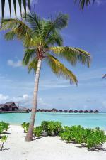 Ari Atol - pláž na jednom z ostrůvků